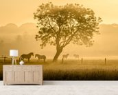 Golden Horses wall mural living room preview