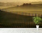 Cypress Shadows wall mural in-room view