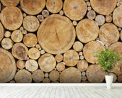 Stacked Round Logs wallpaper mural in-room view