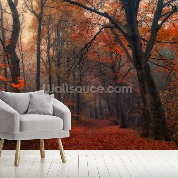 Decorative Forest wallpaper mural room setting