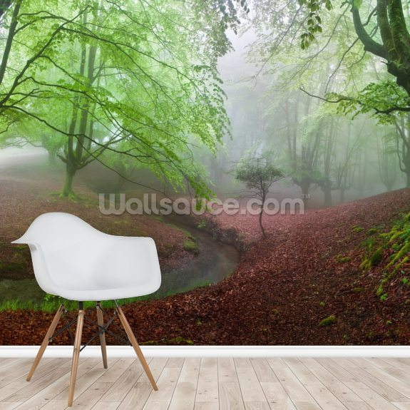 The Forest Maravillador wall mural room setting