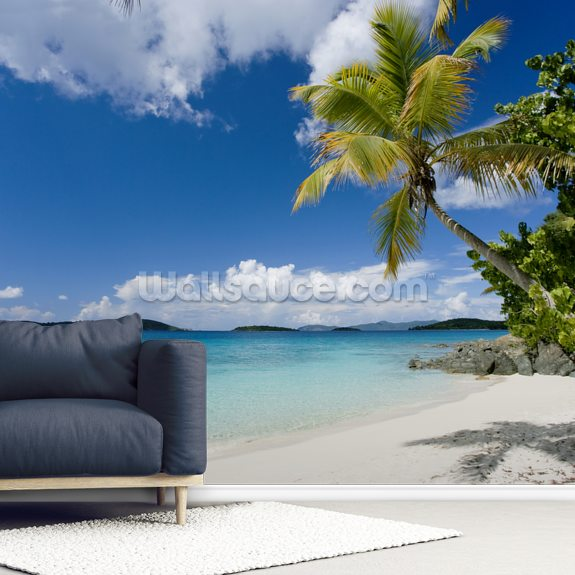 U.S. Virgin Islands, St. John, Palm Tree Beautiful Beach wallpaper mural room setting