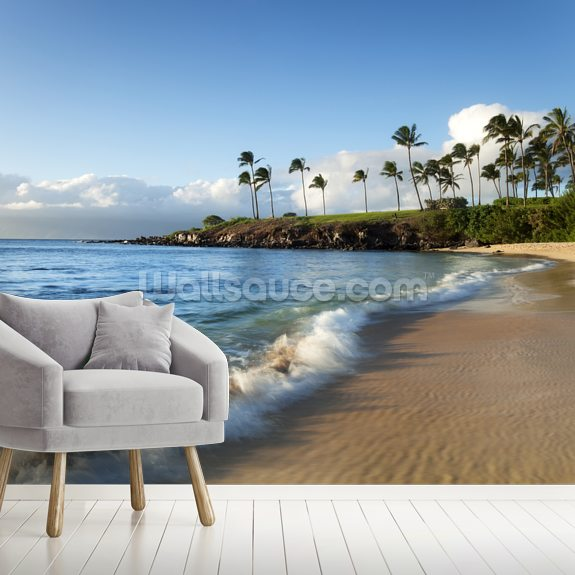 Hawaii, Maui, Kapalua Beach wall mural room setting