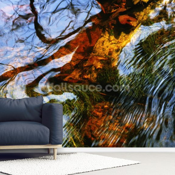 Ripples And Reflections On Water Surface mural wallpaper room setting