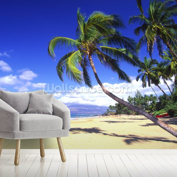 Palm Trees On A Beautiful Tropical Beach wallpaper mural room setting