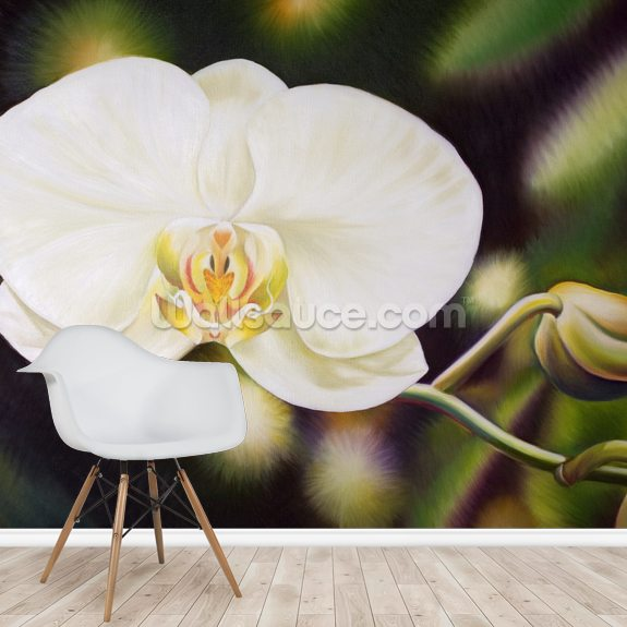 White Phalaenopsis Orchid Blossom wall mural room setting