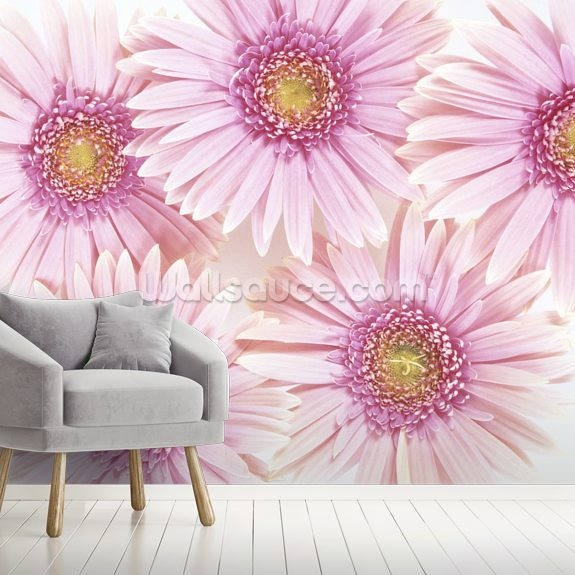 Pink Daisies mural wallpaper room setting