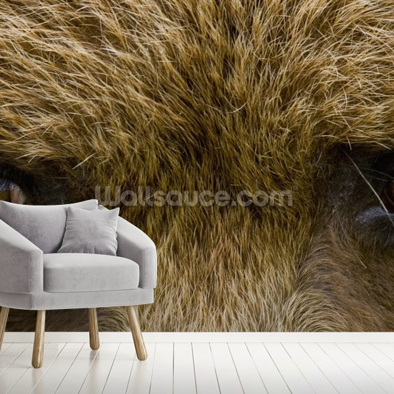 Brown Bear's Eyes In Hallo Bay mural wallpaper room setting