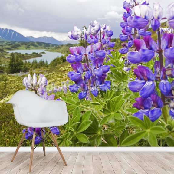 Lupine Flowers Near Lost Lake Seward wall mural room setting