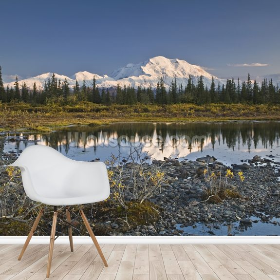 The Alaska Range And Denali's North Face wallpaper mural room setting