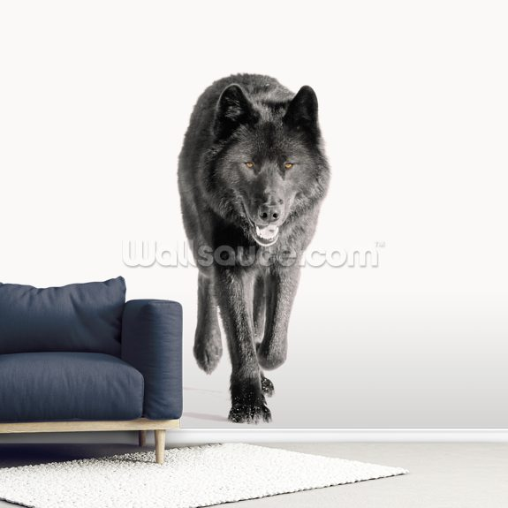 Archipelago Wolf In Black mural wallpaper room setting