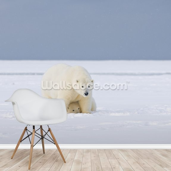 Polar Bear Cub Hides Under Its Mother mural wallpaper room setting