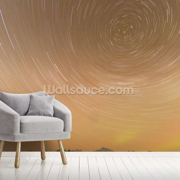 Night Time View Of Star Trails Over Mt. Mckinley wallpaper mural room setting