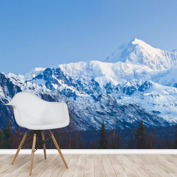 Panoramic View Of Southside Mount Mckinley mural wallpaper room setting