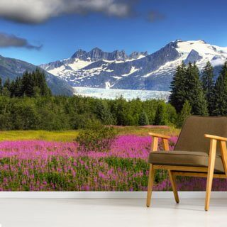 The Mendenhall Glacier with a Field of Fireweed
