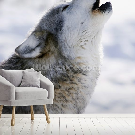 Gray Wolf Howling in Winter wall mural room setting