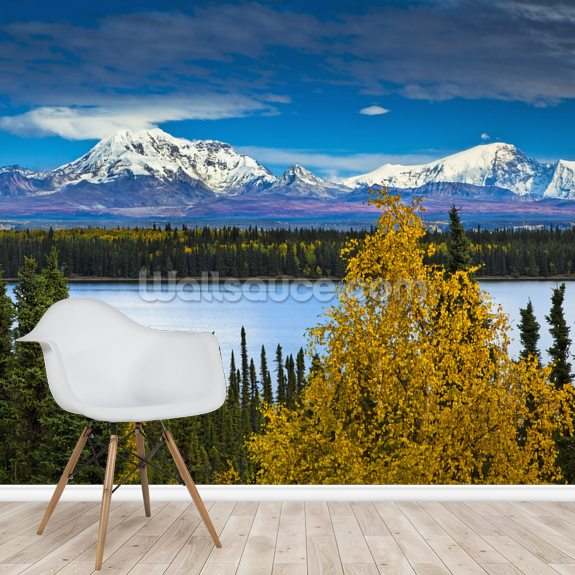 View Of Mt. Sanford and Mt. Drum with Willow Lake mural wallpaper room setting