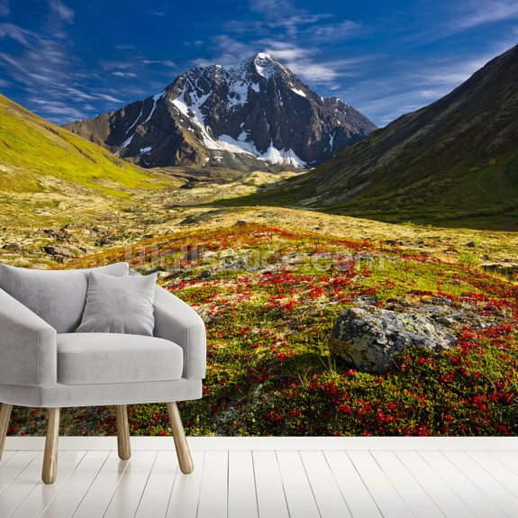 Bold Peak And Colorful Fall Tundraa wallpaper mural room setting