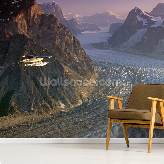 Cessna 185 Float Plane wallpaper mural room setting
