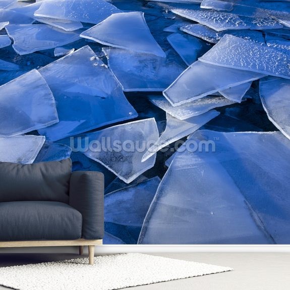 Fractured Surface Ice Of Mendenhall Lake wall mural room setting