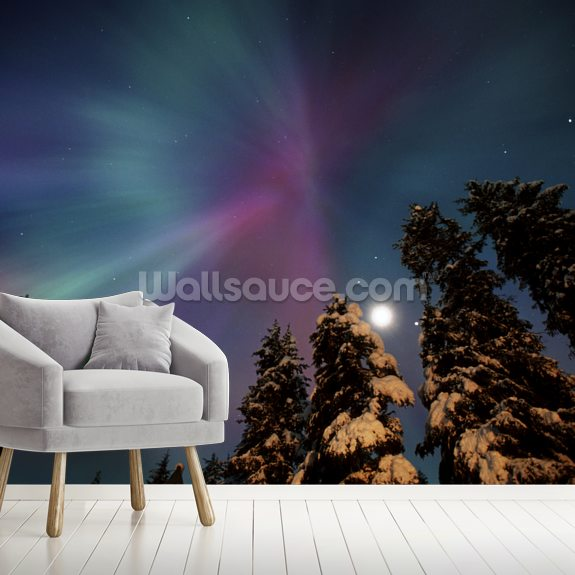 Aurora Corona & Moon Over Crow Creek wallpaper mural room setting