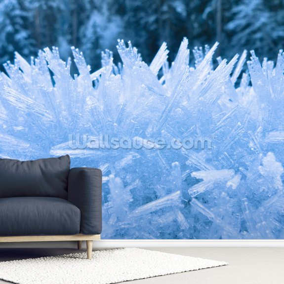 Frost Along The North Fork Of The Nooksak River mural wallpaper room setting