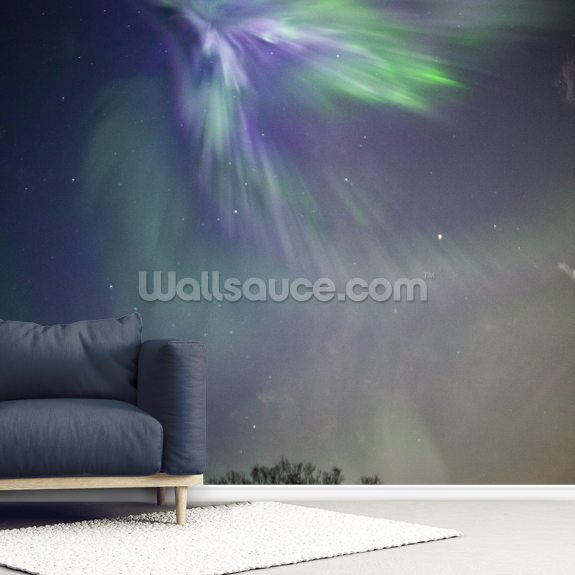 Aurora Borealis Over The Chugach Mountains wall mural room setting