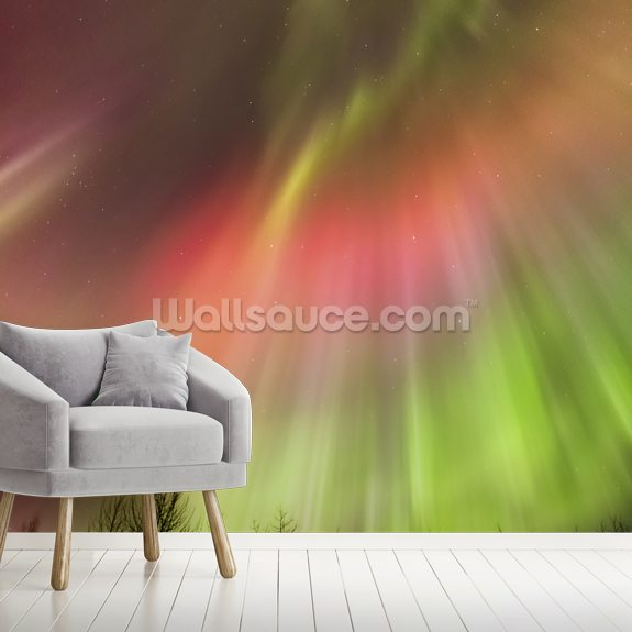 Northern Lights above the Tony Knowles Coastal Trail wall mural room setting