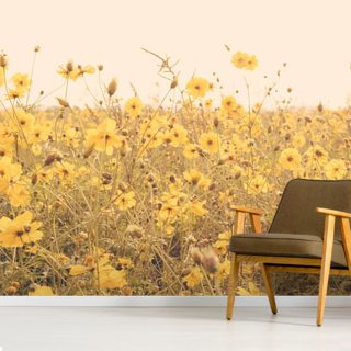 Vintage Yellow Flower Meadow