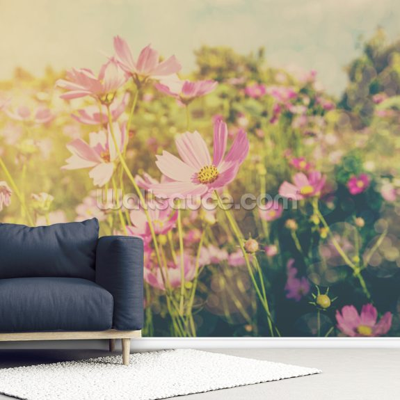 Cosmos Flowers and Sunlight Vintage Tones wall mural room setting
