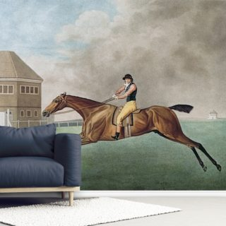 Baronet, 1794 (etching) Wallpaper Wall Murals