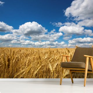 Wheat Field Wallpaper Wall Murals