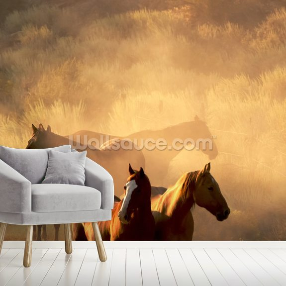 Wild Horses Wall Mural | Wallsauce NZ