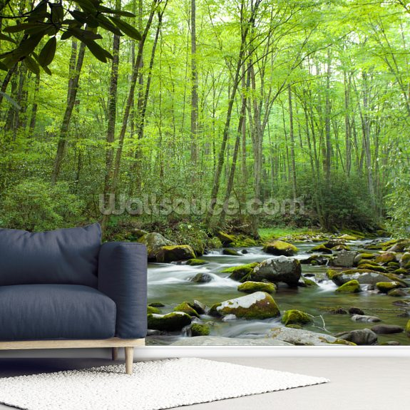 Jungle stream mural wallpaper room setting