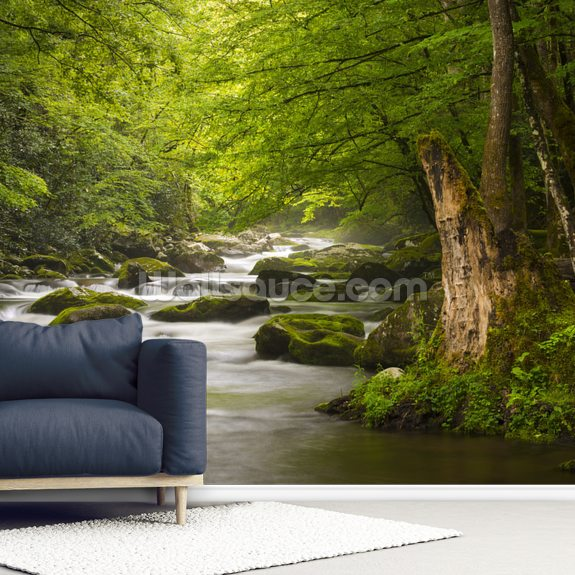 Great Smoky Mountains Tremont River wall mural room setting