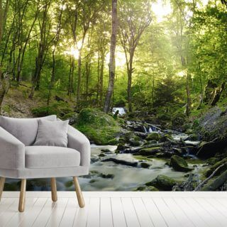 Forest Waterfall Wallpaper Wall Murals