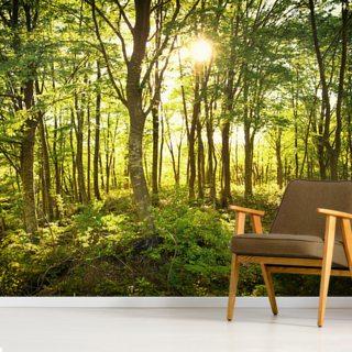 Enchanted Woodland Wallpaper Wallsauce Us