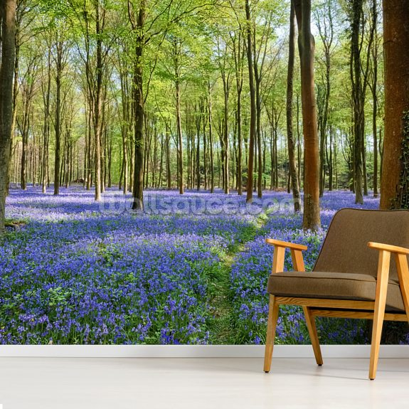 Bluebells in Wepham Woods mural wallpaper room setting