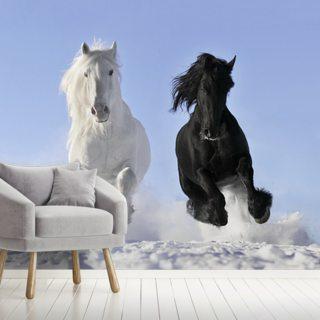 horse wallpaper \u0026 wall murals wallsauce auhorses in snow