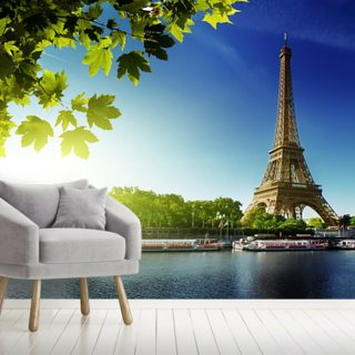 River Seine Wallpaper Wall Murals