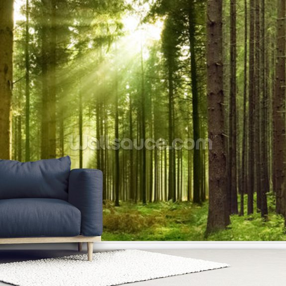 panoramic woodland wallpaper mural wallsauce uspanoramic woodland mural wallpaper room setting