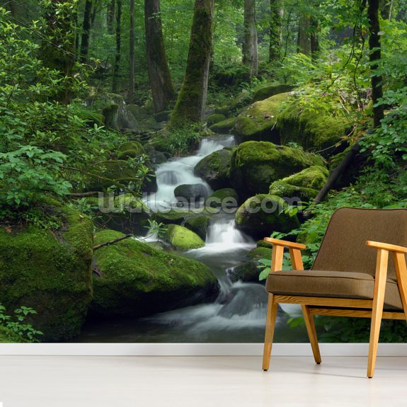 Mossy Waterfall wall mural room setting