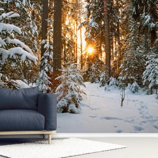 Winter Wonderland Wallpaper Wall Murals