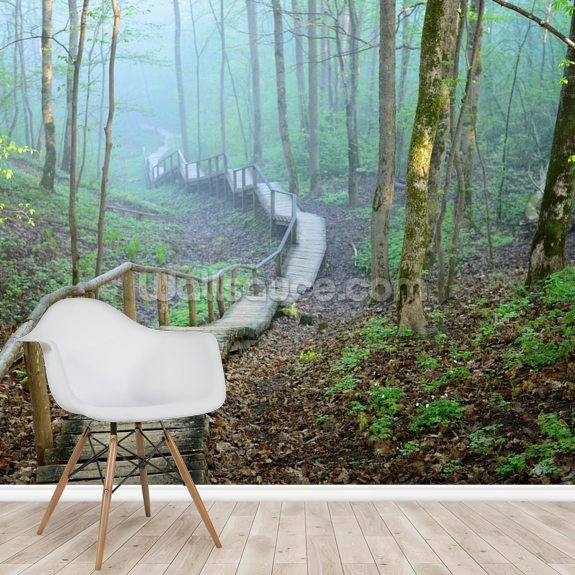 Foggy Forest Stairway mural wallpaper room setting