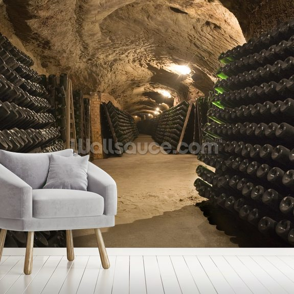 Wine Cellar Cave wall mural room setting