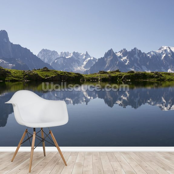 Alps wall mural room setting