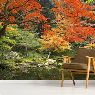 Autumn Woodland Colours Wallpaper Wall Murals