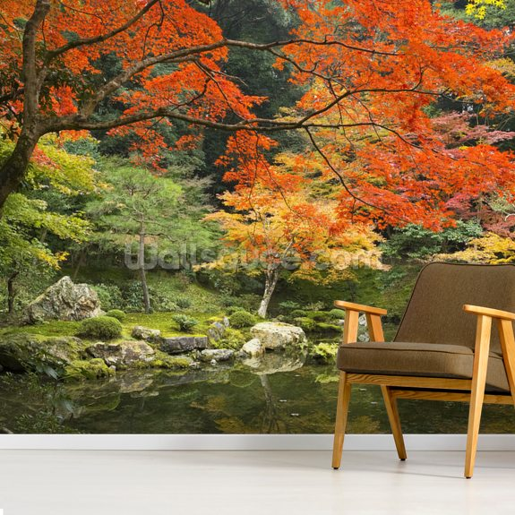 Autumn Woodland Colours wallpaper mural room setting