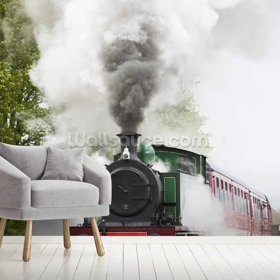 Steam Train in Motion wallpaper mural room setting