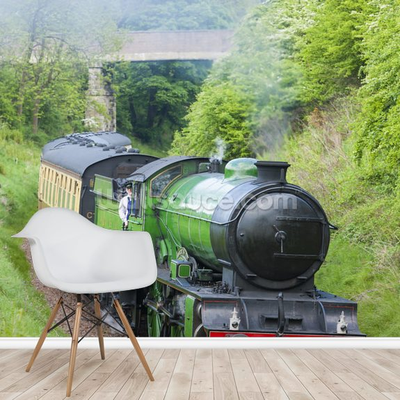 Steam Train in Countryside mural wallpaper room setting
